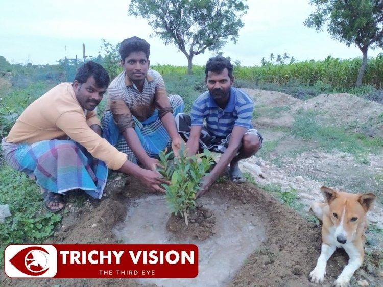 500க்கும் மேற்பட்ட மரக்கன்றுகளை நட்டு ஊரடங்கில் அசத்திய திருச்சி கலாம் அமைப்பினர்!
